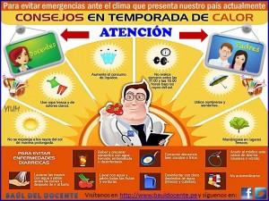 Consejos para la temporada de calor